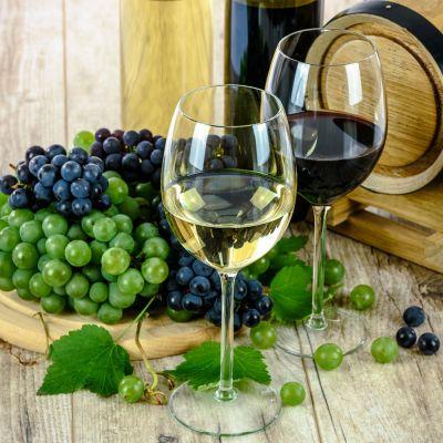 Reben Wanderung mit Weinprobe